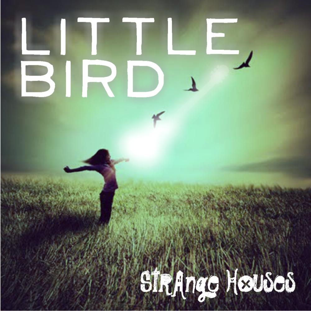 little_bird_cover